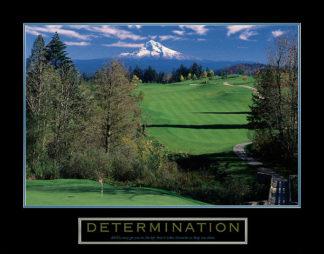 U453 - Unknown - Determination – Golf