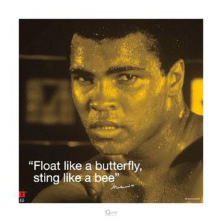 U522 - Unknown - Muhammad Ali – Butterfly