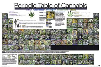 U630 - Unknown - The Periodic Table of Cannabis