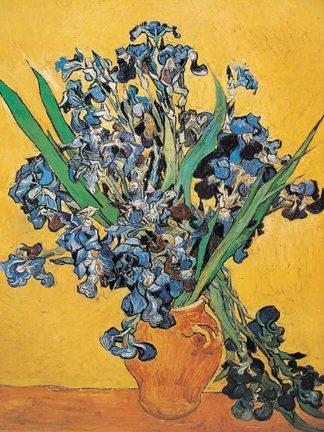 V478 - Van Gogh, Vincent - Irises, 1890