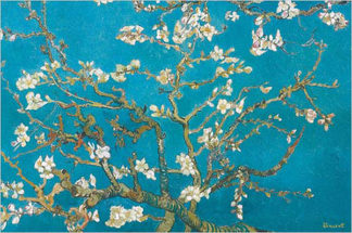 V508 - Van Gogh, Vincent - Almond Blossoms, 1890 (detail)
