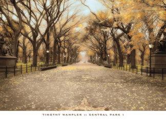 W418 - Wampler, Tim - Central Park I