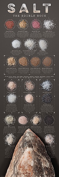 Z145 - Ziegler/Keating - Salt - The Edible Rock