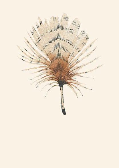 IN99117 - Incado - Feather 06