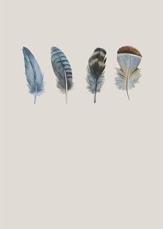 IN99122 - Incado - Feather 11