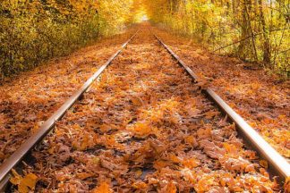 O306D - Oldford, Tim - Train Tracks in The Fall