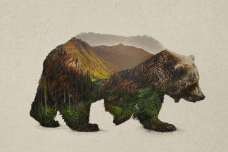 D1073D - Davies Babies - North American Brown Bear