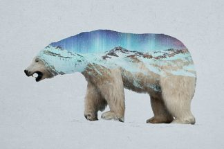 D1076D - Davies Babies - The Arctic Polar Bear