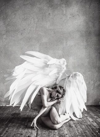 IN99080 - PhotoINC Studio - Angel