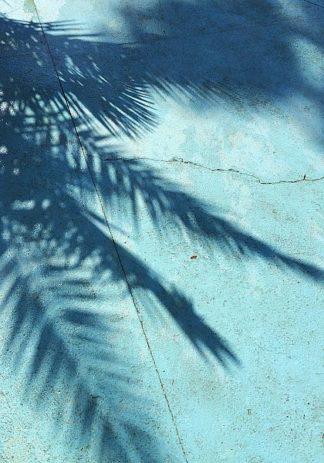 IN99186 - PhotoINC Studio - Turquoise Shadow