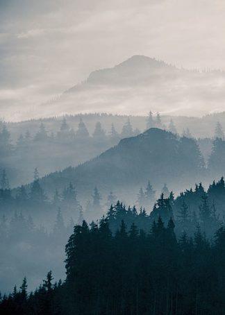 IN99215 - PhotoINC Studio - Blue Mountains I