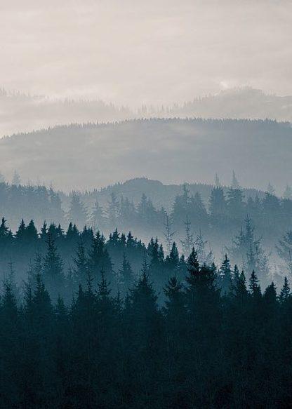 IN99216 - PhotoINC Studio - Blue Mountains II