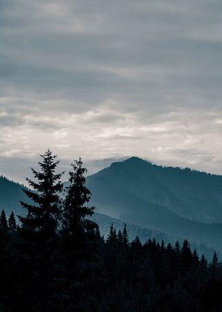 IN99221 - PhotoINC Studio - Blue Mountains VII