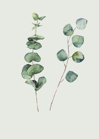 IN99225 - Incado - Botanical I