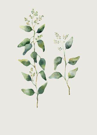 IN99226 - Incado - Botanical II