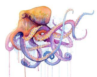 N334D - Nagel, Sam - Octopus 2