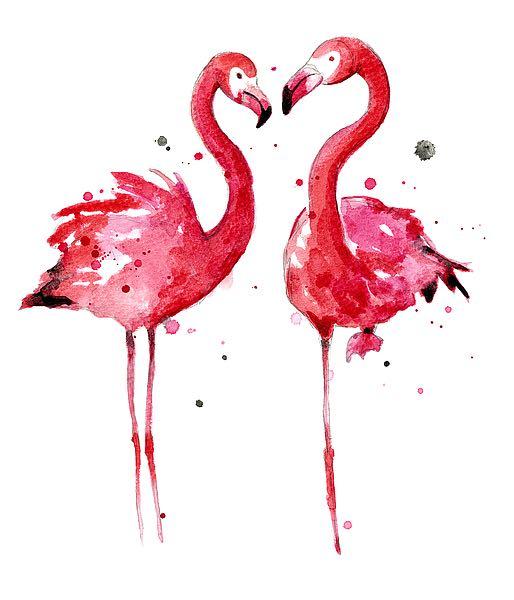 N335d Nagel Sam Pink Flamingos