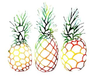 N336D - Nagel, Sam - Retro Pineapples