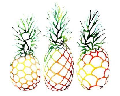 N336D - Nagel, Sam - Retro Pineapples