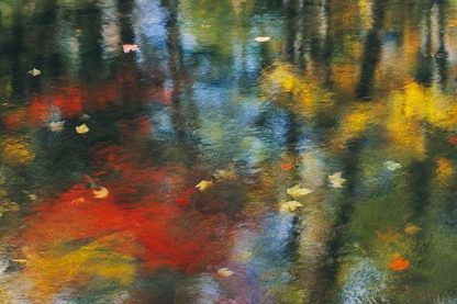 S1631D - Soloway, Eddie - Reflection With Leaves