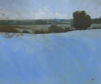 B3593D - Bailey, Paul - First of Winter