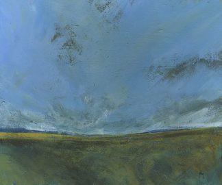 B3600D - Bailey, Paul - Rough Moor