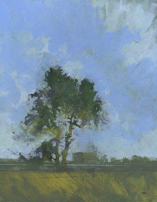 B3601D - Bailey, Paul - Sandlings Dawn