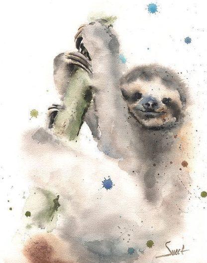 S1649D - Sweet, Eric - Sloth