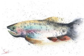 S1654D - Sweet, Eric - Rainbow Trout