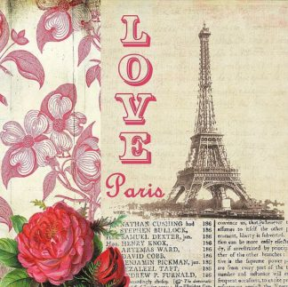 SBAV1462 - AV Art - Love Paris