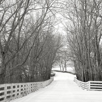 B3603D - Bell, Nicholas - Country Lane in Winter