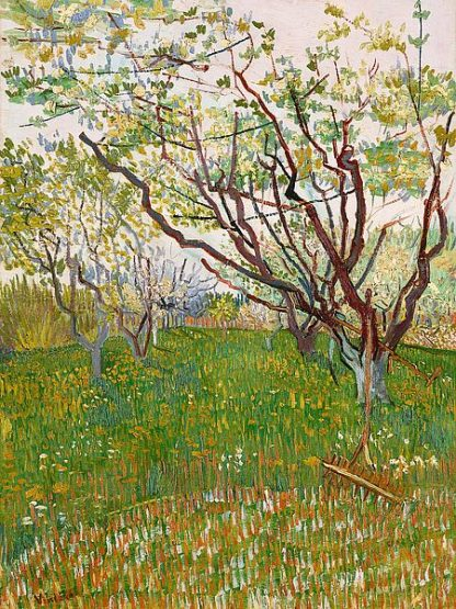 V689D - Van Gogh, Vincent - The Flowering Orchard