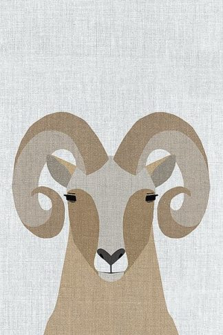 A514D - Annie Bailey Art - Bighorn Sheep