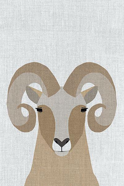 A514D - Annie Bailey Art - Bighorn Sheep