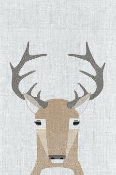 A524D - Annie Bailey Art - Whitetail Deer