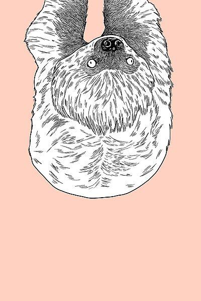 A528D - Annie Bailey Art - Sloth