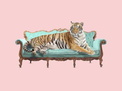 F726D - Farkas, Robert - Lazy Tiger