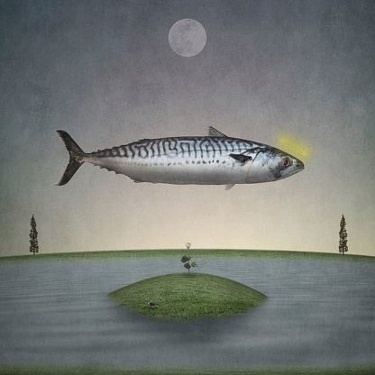 N353D - Noblin, Greg - Holy Mackerel