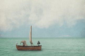 N360D - Noblin, Greg - Set Sail