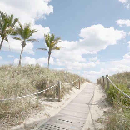 B3662D - Bay, Noah - A Stroll in the Dunes