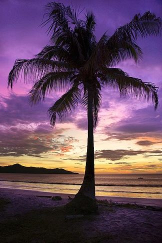 H1491D - Hiers, Winthrope - Brasalito Bay, Costa Rica