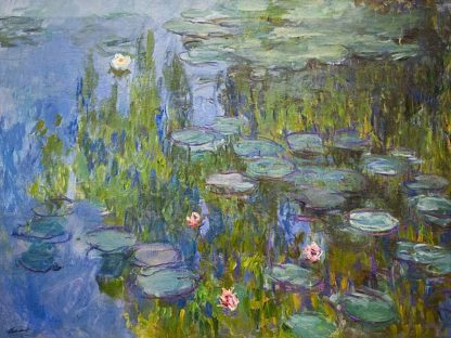M1593D - Monet, Claude - Seerosen