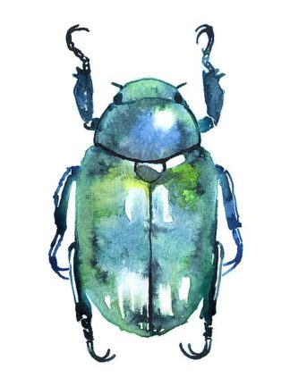 N376D - Nagel, Sam - Chromatic Blue Beetle