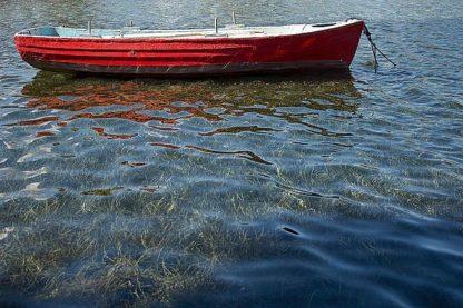 W990D - White, Lynda - Red Boat