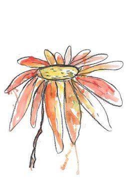 W1013D - Weiss, Jan - Orange Modern Botanical