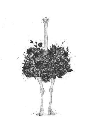 S1763D - Solti, Balazs - Floral Ostrich
