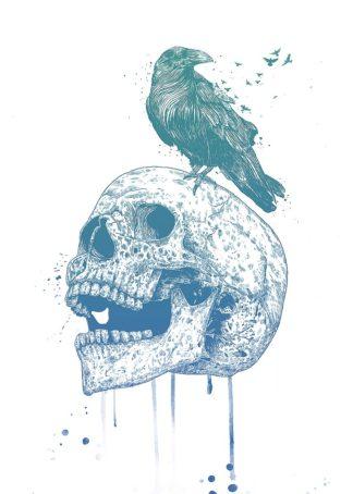 S1773D - Solti, Balazs - New Skull (Blue)