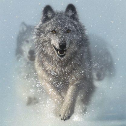 SBBC2062 - Bogle, Collin - Running Wolves - Snow Plow - Square