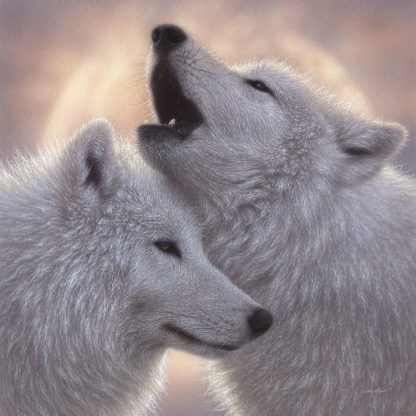 SBBC2074 - Bogle, Collin - Wolves - Love Song