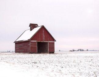 H1524D - Hammond, David - Central Illinois Barn